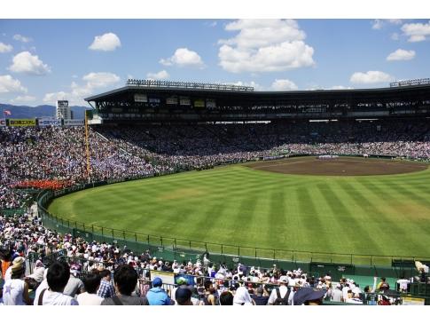 野球・ソフトボール スポーツマウスピース マウスガード